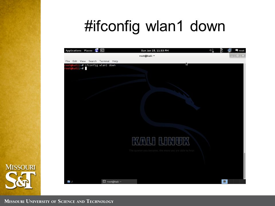 #ifconfig wlan1 down