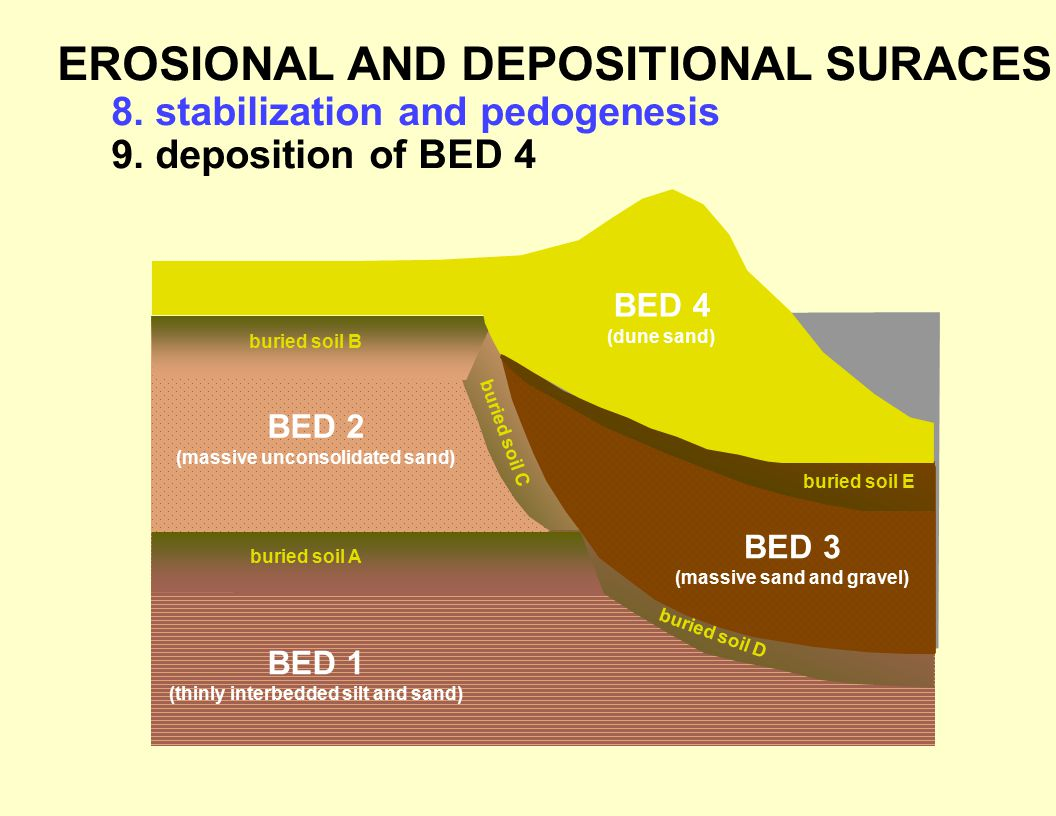 EROSIONAL AND DEPOSITIONAL SURACES 8.stabilization and pedogenesis 9.