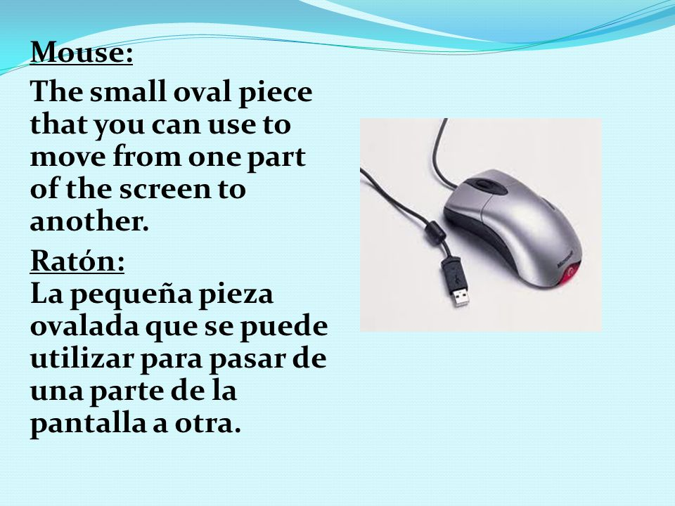 Mouse: The small oval piece that you can use to move from one part of the screen to another. Ratón: La pequeña pieza ovalada que se puede utilizar par