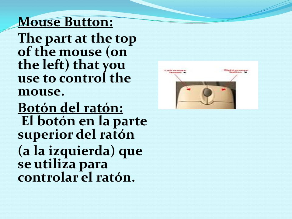 Mouse Button: The part at the top of the mouse (on the left) that you use to control the mouse. Botón del ratón: El botón en la parte superior del rat
