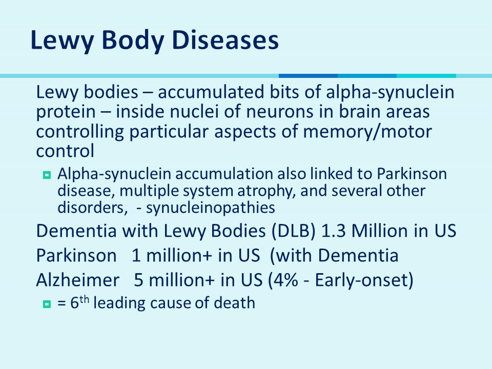  Lewy bodies – accumulated bits of alpha-synuclein protein – inside nuclei of neurons in brain areas controlling particular aspects of memory/motor c