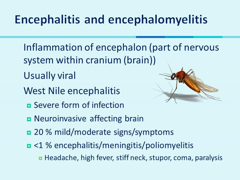  Inflammation of encephalon (part of nervous system within cranium (brain))  Usually viral  West Nile encephalitis  Severe form of infection  Neu