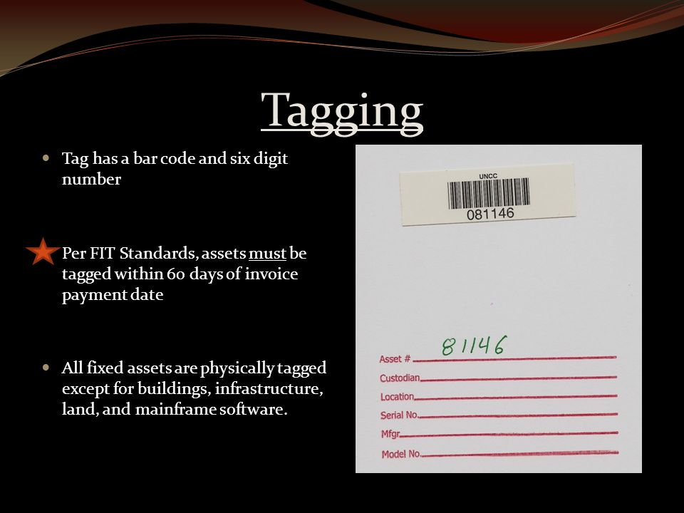 Tagging Tag has a bar code and six digit number Per FIT Standards, assets must be tagged within 60 days of invoice payment date All fixed assets are physically tagged except for buildings, infrastructure, land, and mainframe software.