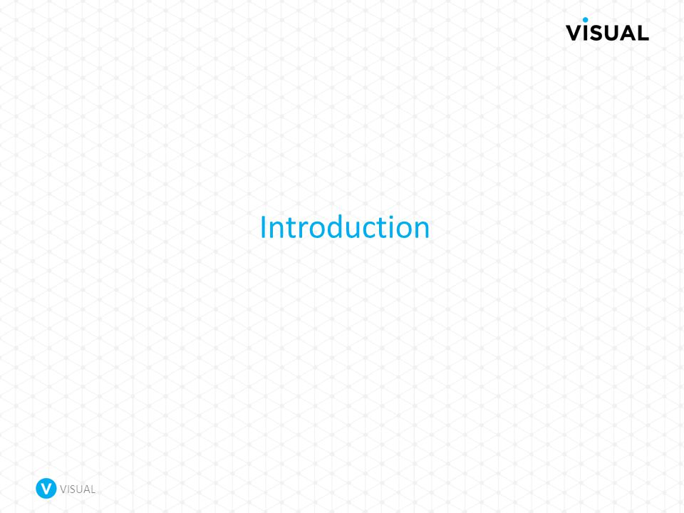 VISUAL Introduction