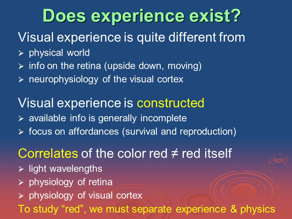 Does experience exist.