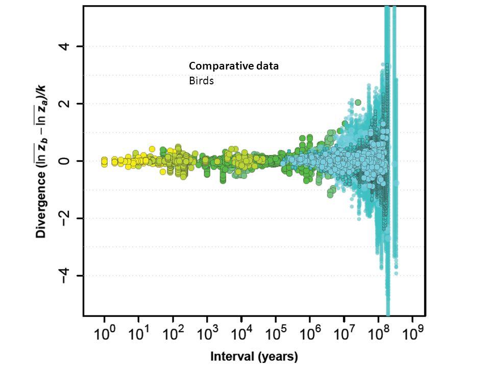 Comparative data Birds