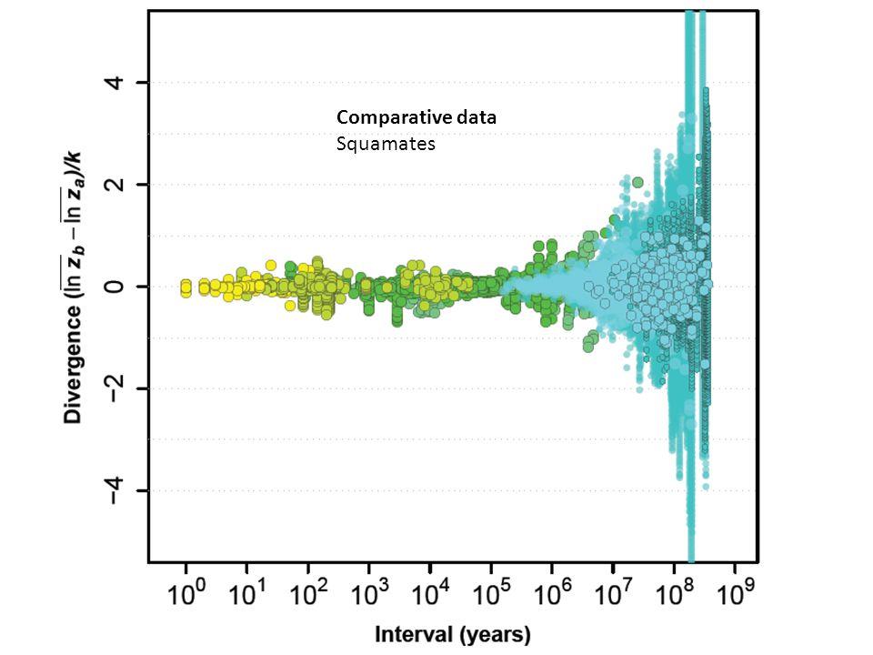 Comparative data Squamates
