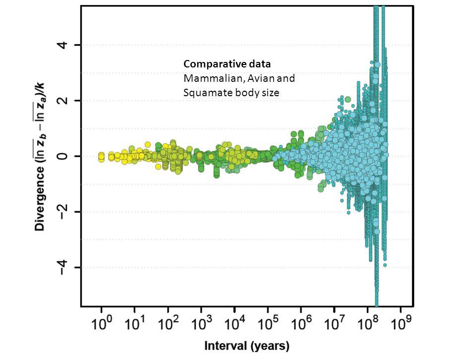 Comparative data Mammalian, Avian and Squamate body size