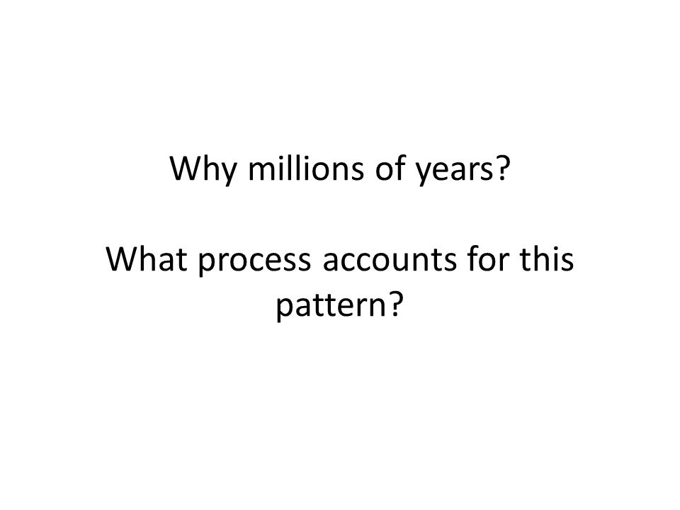 Why millions of years? What process accounts for this pattern?