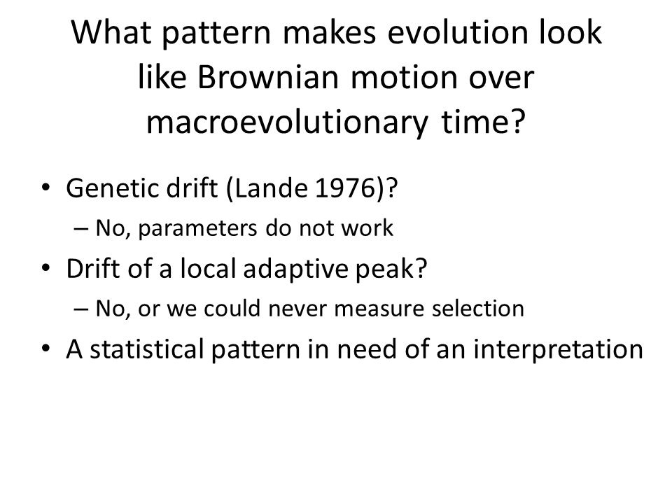 What pattern makes evolution look like Brownian motion over macroevolutionary time? Genetic drift (Lande 1976)? – No, parameters do not work Drift of