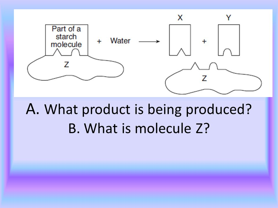 Carb 4 A. What product is being produced B. What is molecule Z