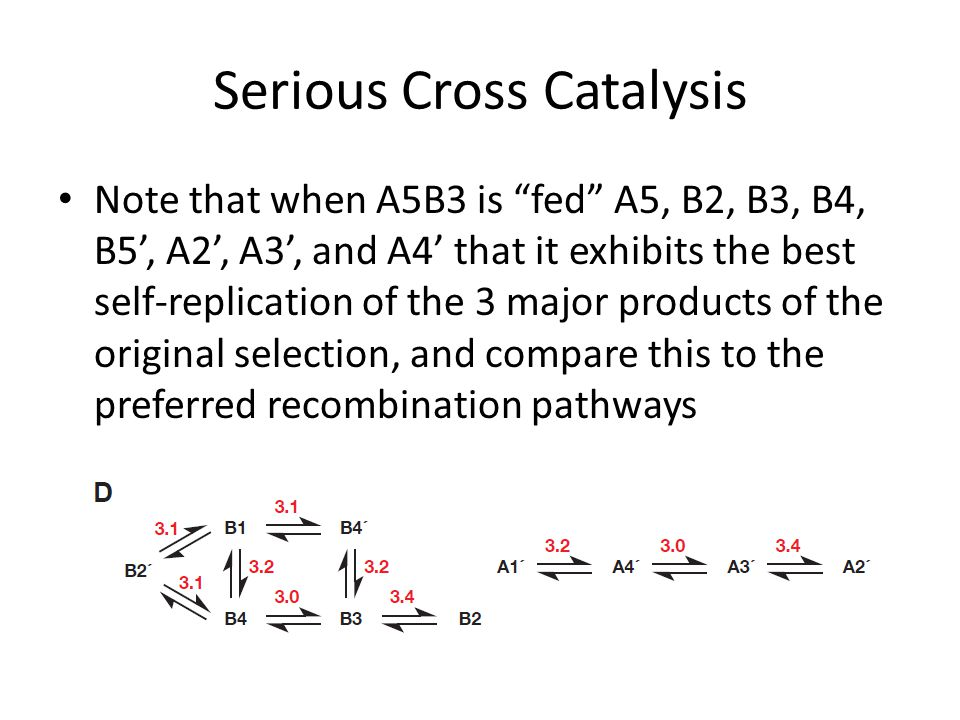 "Serious Cross Catalysis Note that when A5B3 is ""fed"" A5, B2, B3, B4, B5', A2', A3', and A4' that it exhibits the best self-replication of the 3 major"
