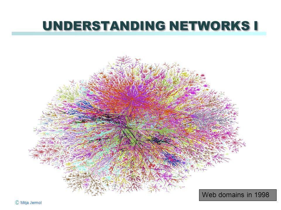 Mitja Jermol © Mitja Jermol UNDERSTANDING NETWORKS I Web domains in 1998