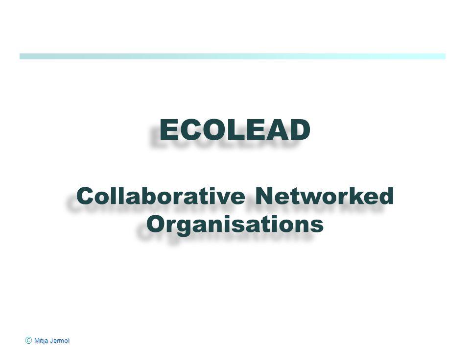 Mitja Jermol © Mitja Jermol ECOLEAD Collaborative Networked Organisations