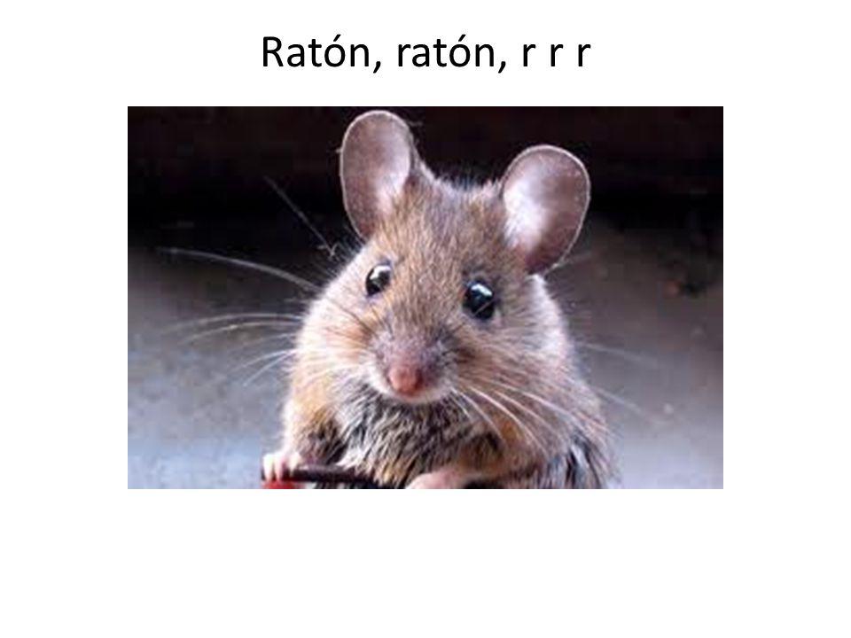 Ratón, ratón, r r r