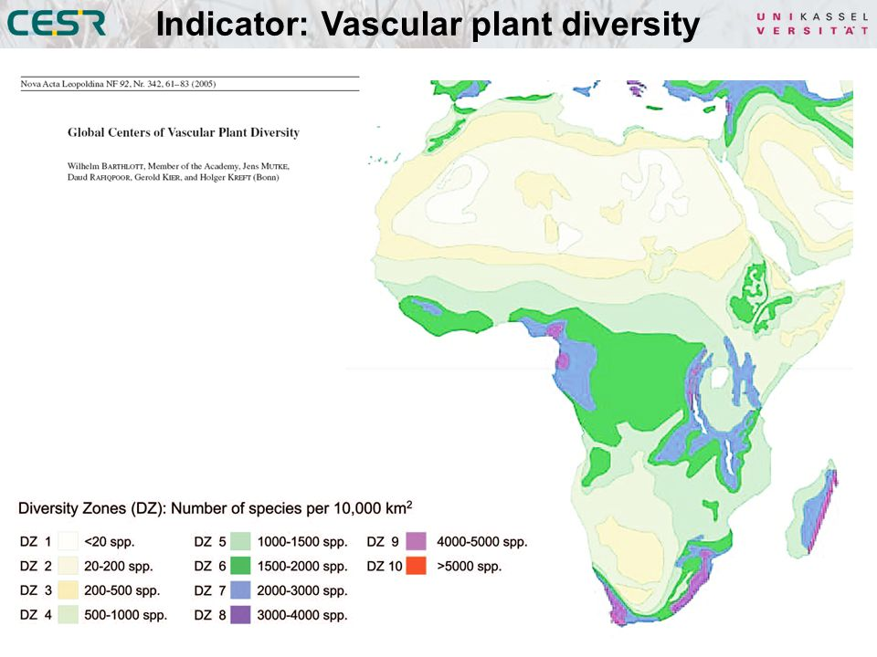 Indicator: Vascular plant diversity