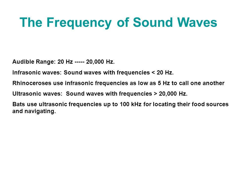 The Frequency of Sound Waves Audible Range: 20 Hz ----- 20,000 Hz.