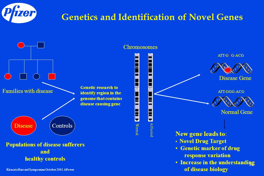 KitasatoHarvard Symposium October 2001 APower 36 Genetics and Identification of Novel Genes Families with disease Genetic research to identify region in the genome that contains disease causing gene Chromosomes Normal Affected Disease Gene Normal Gene DiseaseControls Populations of disease sufferers and healthy controls New gene leads to: Novel Drug Target Genetic marker of drug response variation Increase in the understanding of disease biology ATT-GCG-ACG ATT-GGG-ACG