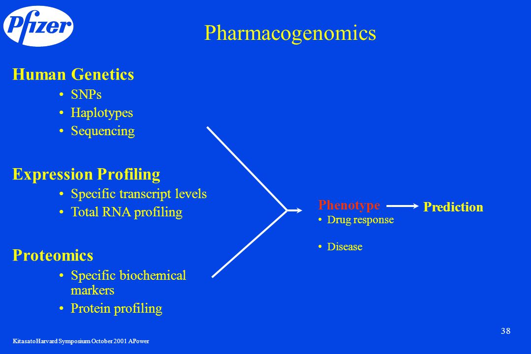 KitasatoHarvard Symposium October 2001 APower 38 Human Genetics SNPs Haplotypes Sequencing Expression Profiling Specific transcript levels Total RNA profiling Proteomics Specific biochemical markers Protein profiling Phenotype Drug response Disease Prediction Pharmacogenomics