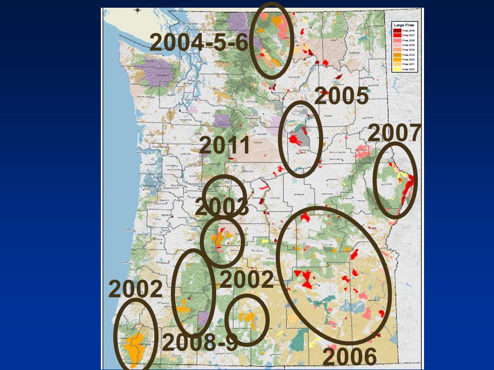 2002 2006 2007 2004-5-6 2003 2008-9 2002 2005 2011