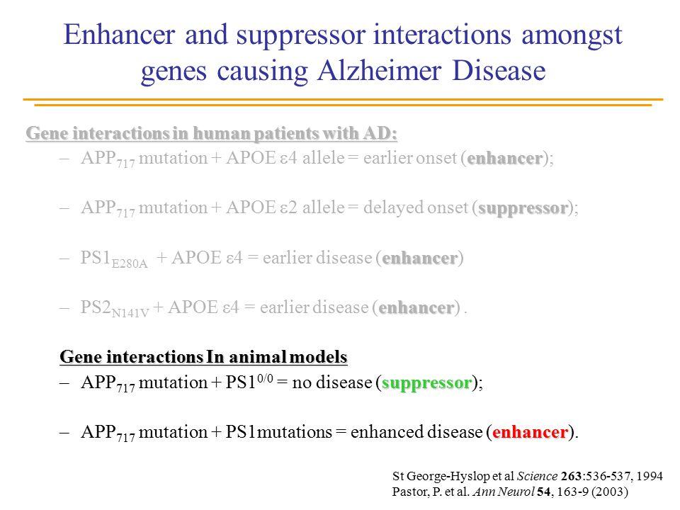 Enhancer and suppressor interactions amongst genes causing Alzheimer Disease St George-Hyslop et al Science 263:536-537, 1994 Pastor, P.