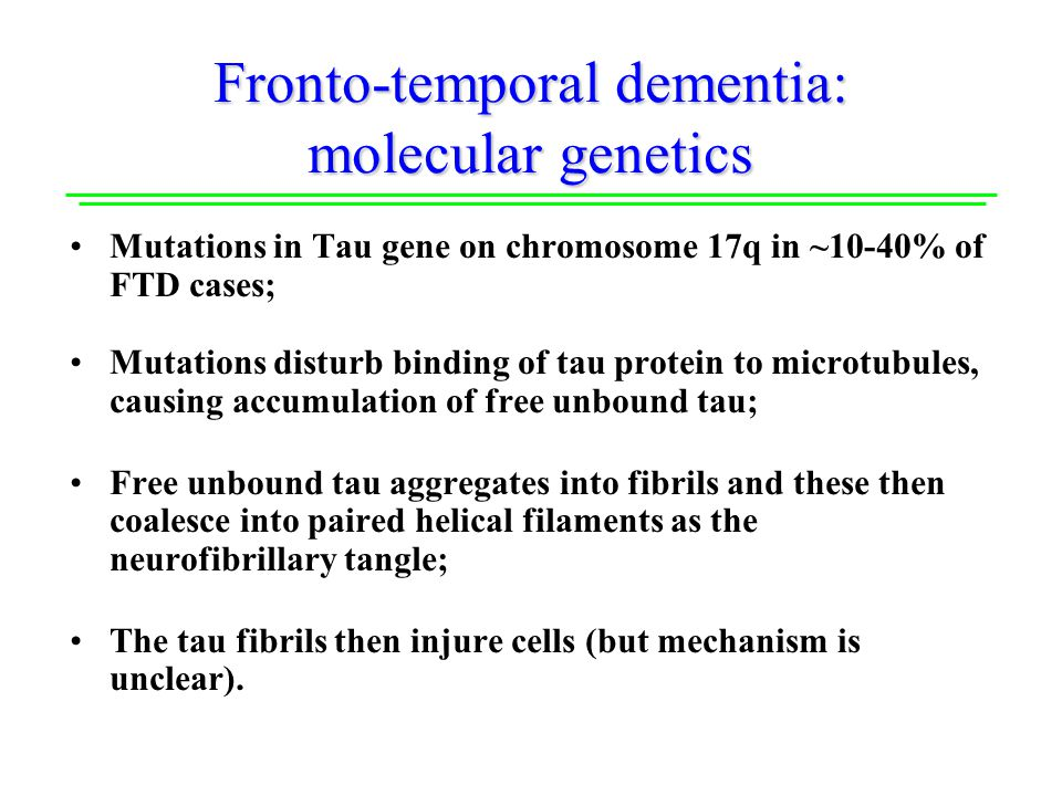 Fronto-temporal dementia: molecular genetics Mutations in Tau gene on chromosome 17q in ~10-40% of FTD cases; Mutations disturb binding of tau protein to microtubules, causing accumulation of free unbound tau; Free unbound tau aggregates into fibrils and these then coalesce into paired helical filaments as the neurofibrillary tangle; The tau fibrils then injure cells (but mechanism is unclear).