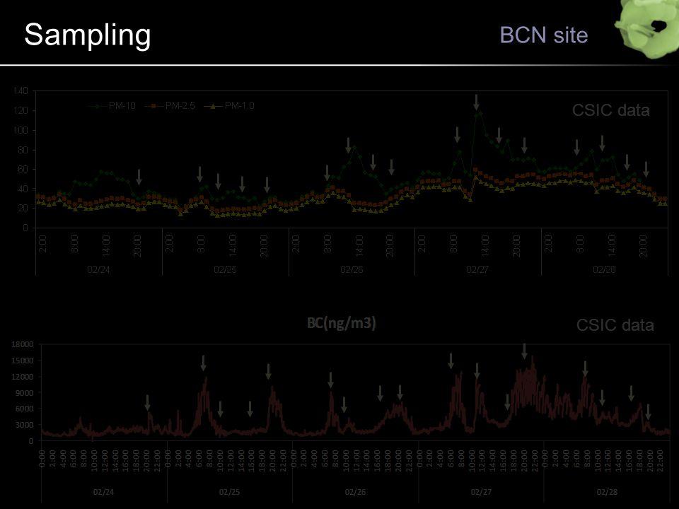 Sampling BCN site CSIC data
