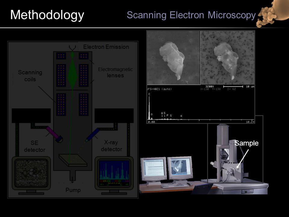 Methodology Scanning Electron Microscopy Electron Emission Electromagnetic lenses X-ray detector SE detector SE detector Signal conversion Signal conversion Pump Scanning coils Sample