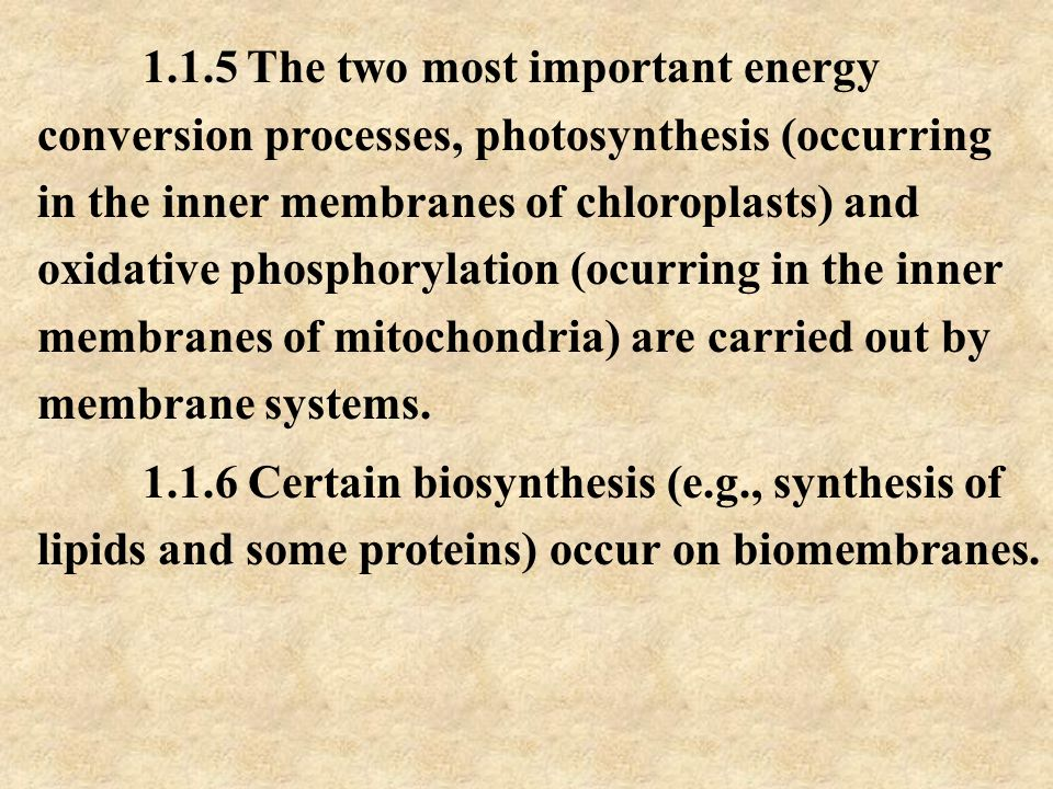 1.1.5 The two most important energy conversion processes, photosynthesis (occurring in the inner membranes of chloroplasts) and oxidative phosphorylation (ocurring in the inner membranes of mitochondria) are carried out by membrane systems.