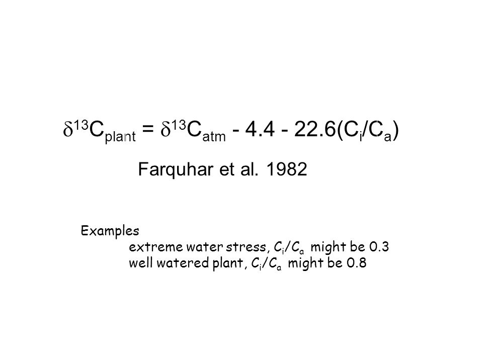  13 C plant =  13 C atm - 4.4 - 22.6(C i /C a ) Farquhar et al. 1982 C i /C a  13 C plant Examples extreme water stress, C i /C a might be 0.3 well