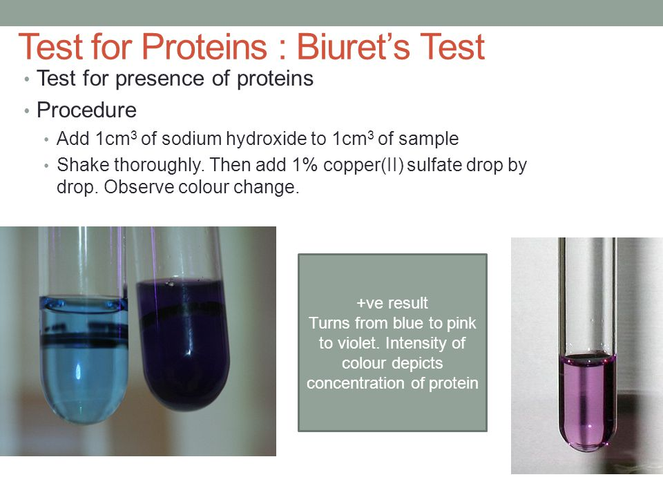 Test for Proteins : Biuret's Test Test for presence of proteins Procedure Add 1cm 3 of sodium hydroxide to 1cm 3 of sample Shake thoroughly. Then add