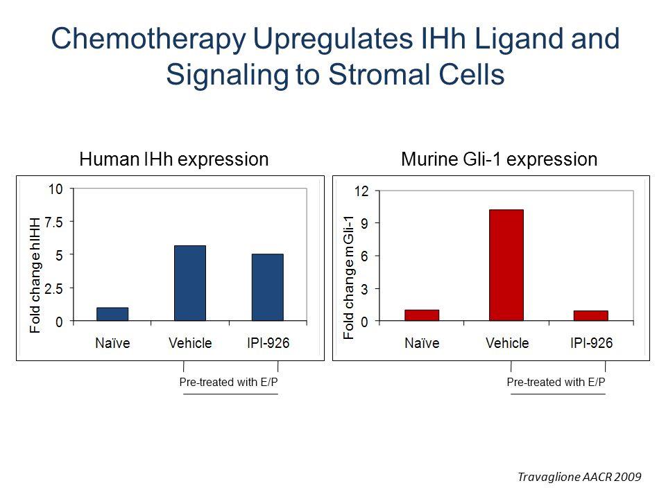 Human IHh expressionMurine Gli-1 expression Pre-treated with E/P Travaglione AACR 2009 Chemotherapy Upregulates IHh Ligand and Signaling to Stromal Ce