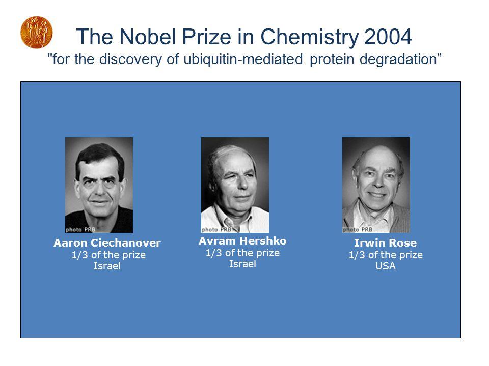 The Nobel Prize in Chemistry 2004