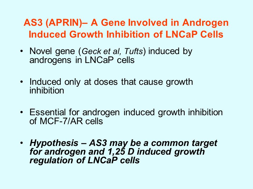 Novel gene ( Geck et al, Tufts ) induced by androgens in LNCaP cells Induced only at doses that cause growth inhibition Essential for androgen induced growth inhibition of MCF-7/AR cells Hypothesis – AS3 may be a common target for androgen and 1,25 D induced growth regulation of LNCaP cells AS3 (APRIN)– A Gene Involved in Androgen Induced Growth Inhibition of LNCaP Cells