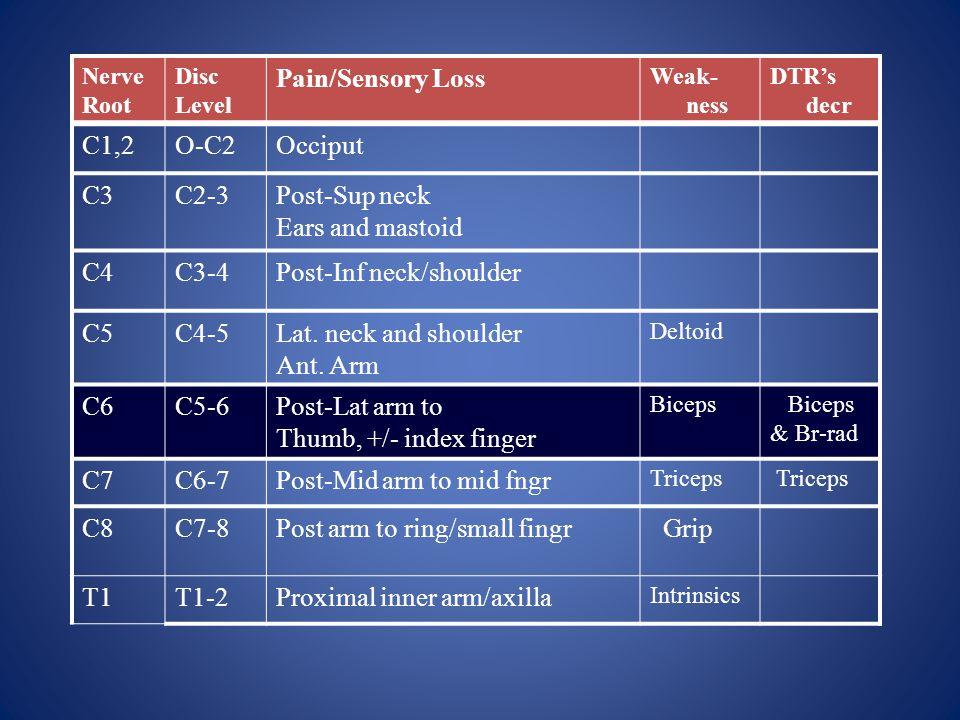 Nerve Root Disc Level Pain/Sensory Loss Weak- ness DTR's decr C1,2O-C2Occiput C3C2-3Post-Sup neck Ears and mastoid C4C3-4Post-Inf neck/shoulder C5C4-5