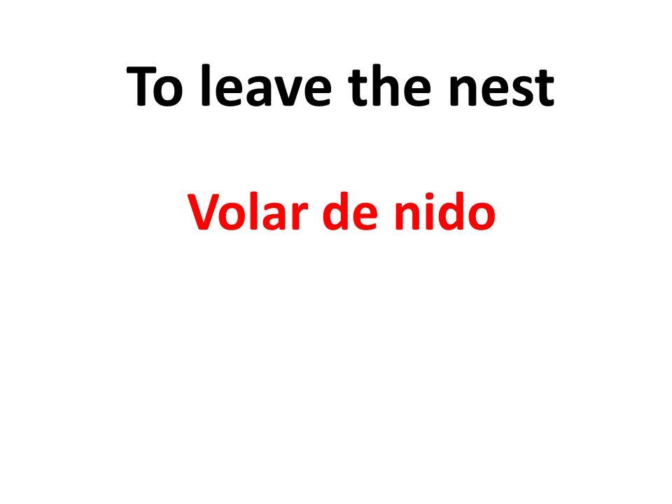 To leave the nest Volar de nido