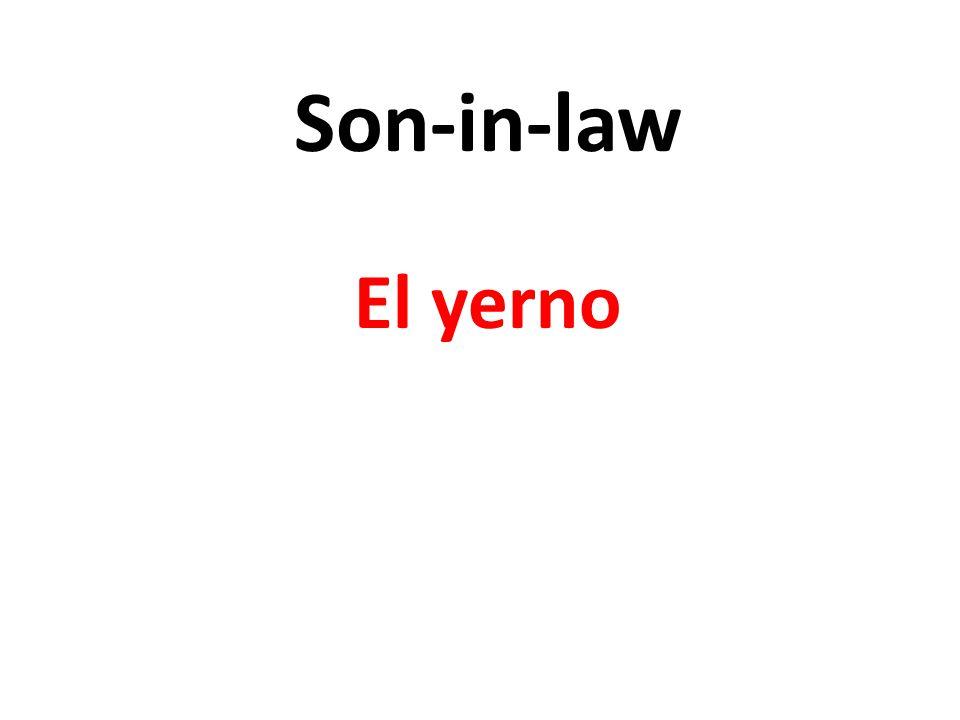 Son-in-law El yerno