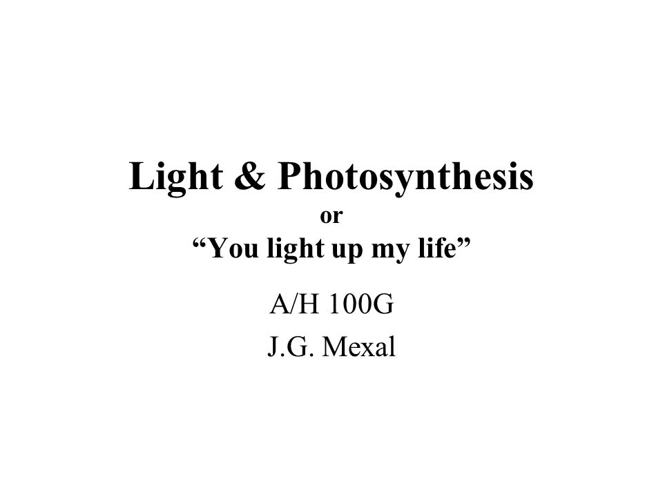 Light & Photosynthesis or You light up my life A/H 100G J.G. Mexal