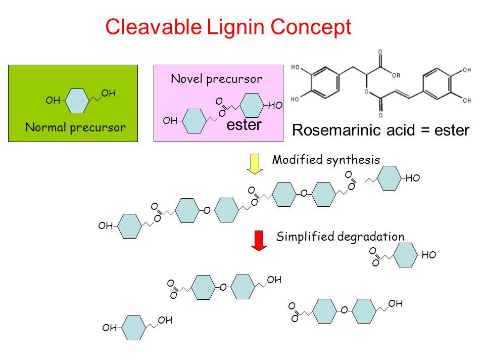 Cleavable Lignin Concept OH O O O O O O O O O O O O O O O O O O Simplified degradation Modified synthesis Normal precursor Novel precursor ester Rosemarinic acid = ester