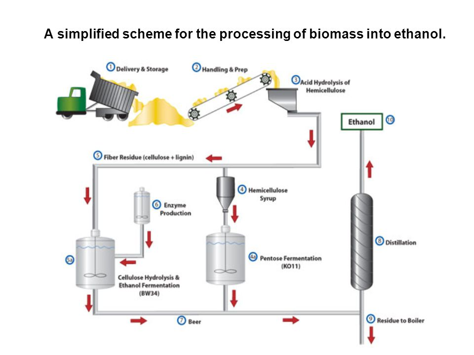 A simplified scheme for the processing of biomass into ethanol.