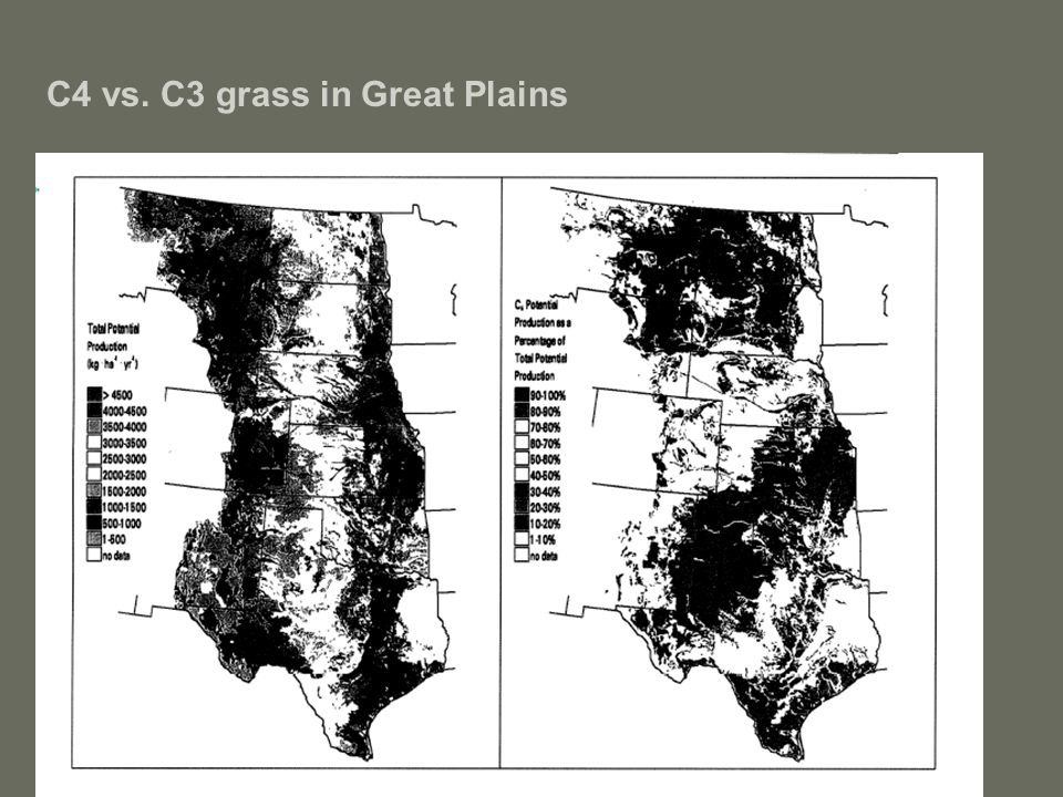C4 vs. C3 grass in Great Plains