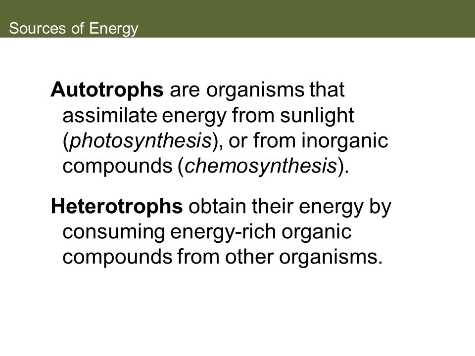 Sources of Energy Autotrophs are organisms that assimilate energy from sunlight (photosynthesis), or from inorganic compounds (chemosynthesis).