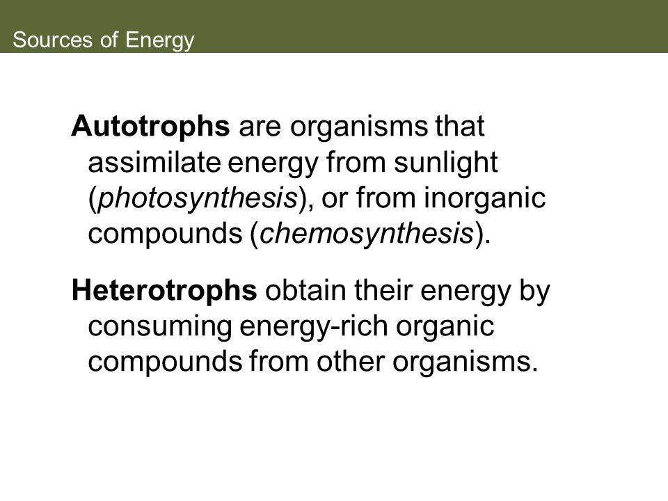 Figure 5.14 CAM Photosynthesis (Part 1)
