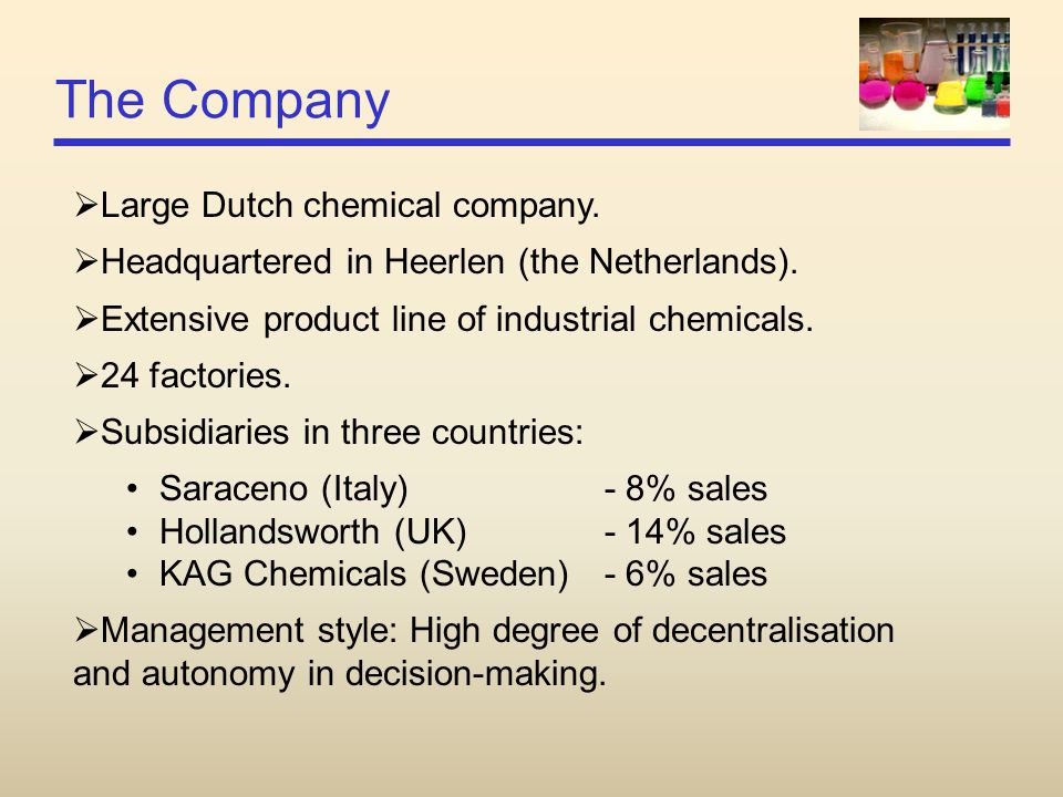 The Company  Large Dutch chemical company.  Headquartered in Heerlen (the Netherlands).  Extensive product line of industrial chemicals.  24 facto