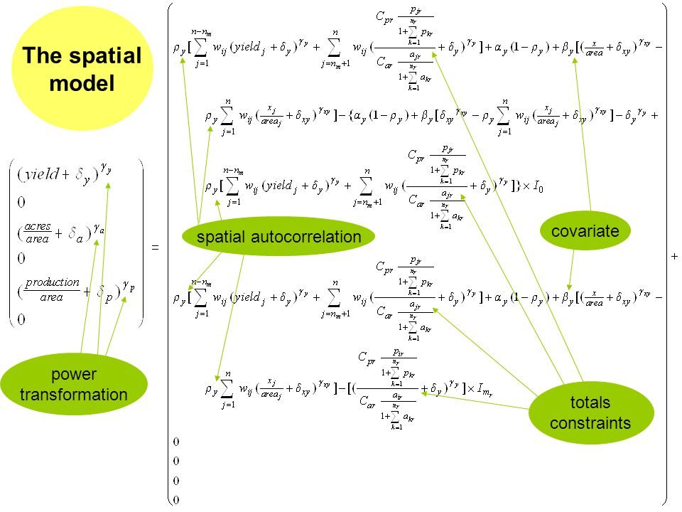 The spatial model power transformation spatial autocorrelation totals constraints covariate