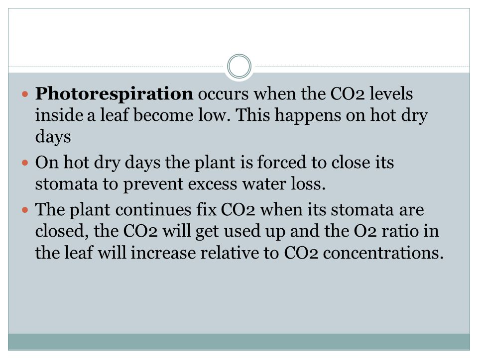 Photorespiration occurs when the CO2 levels inside a leaf become low. This happens on hot dry days On hot dry days the plant is forced to close its st