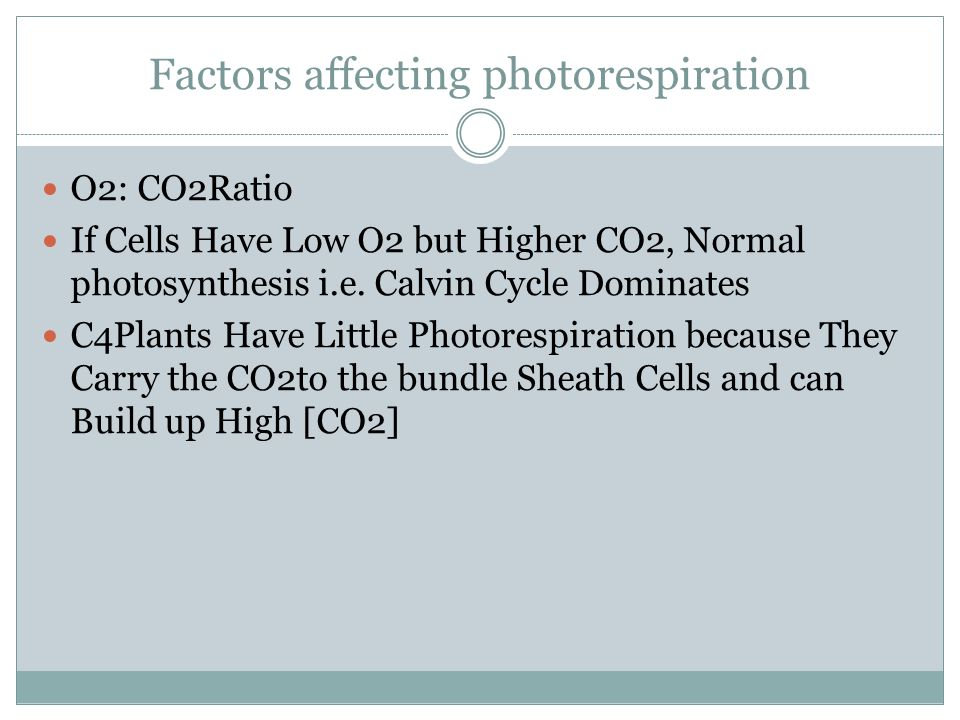 Factors affecting photorespiration O2: CO2Ratio If Cells Have Low O2 but Higher CO2, Normal photosynthesis i.e.