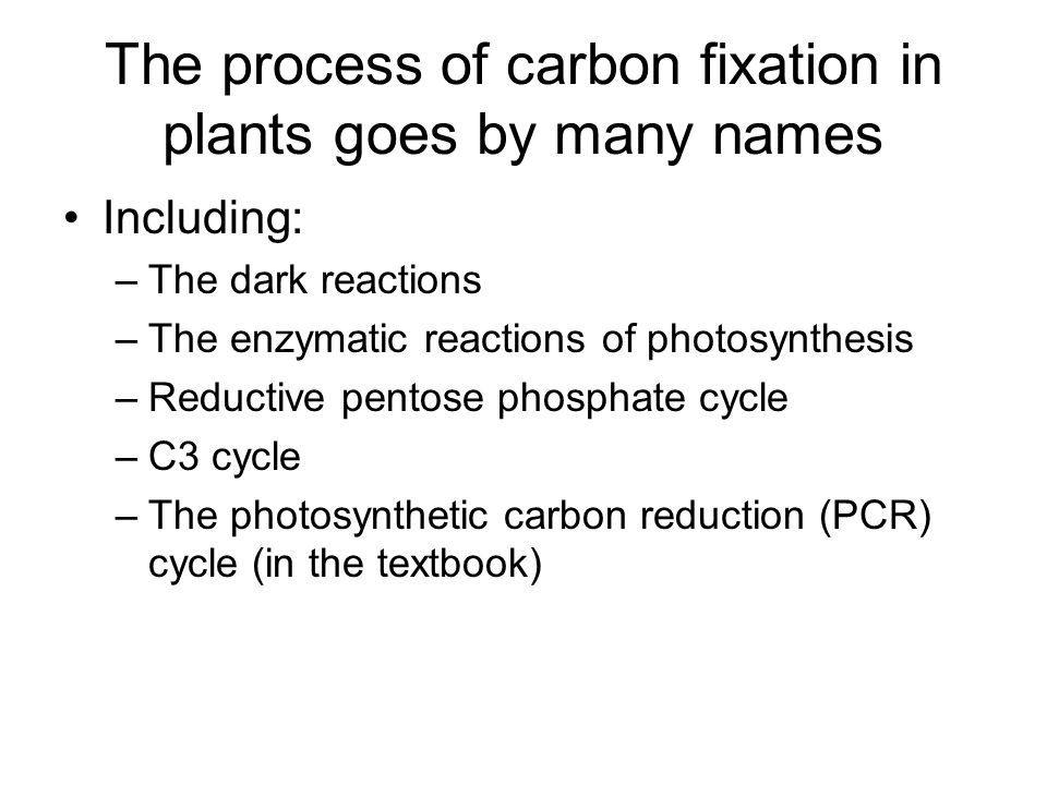 The process of carbon fixation in plants goes by many names Including: –The dark reactions –The enzymatic reactions of photosynthesis –Reductive pentose phosphate cycle –C3 cycle –The photosynthetic carbon reduction (PCR) cycle (in the textbook)