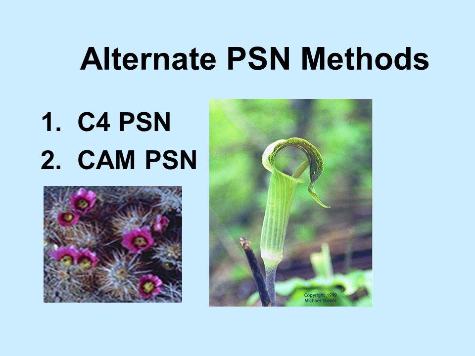Alternate PSN Methods 1. C4 PSN 2. CAM PSN