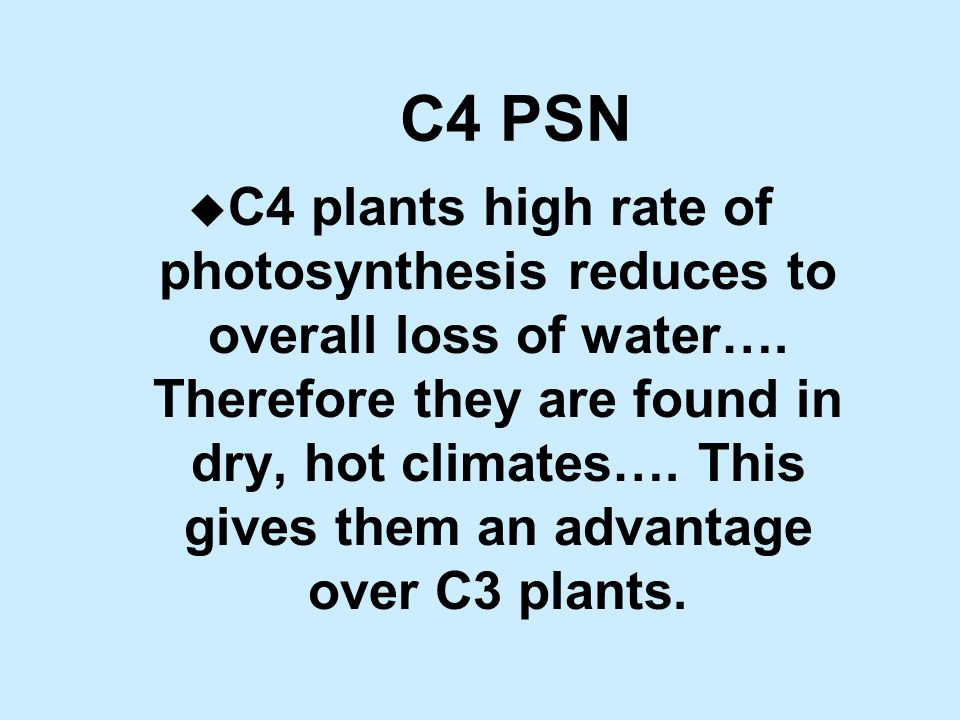 C4 PSN u C4 plants high rate of photosynthesis reduces to overall loss of water….